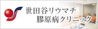 世田谷リウマチ膠原病クリニック